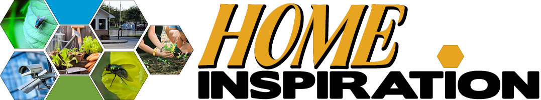 Home Inspirations Banner Feb