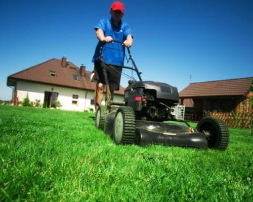 Mow Regularly