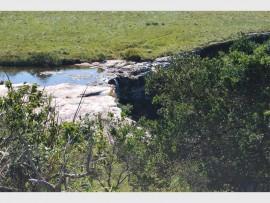 The Mkambati River drops over the Horseshoe Waterfall.