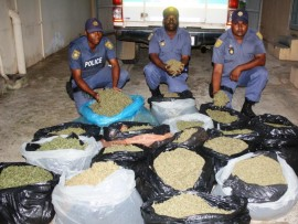 Constable Nqoba Doncabe, warrant officer Phillip Vela Msani and Constable Pagel Rajah with the  dagga worth more than R100 000.