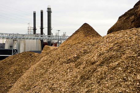 Biomass Power biomass power plant