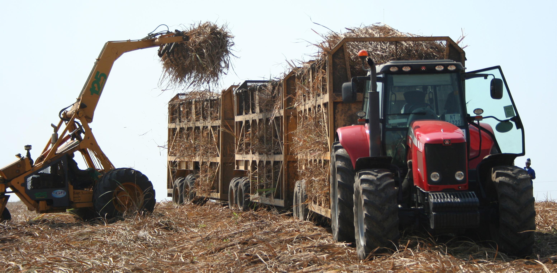 """Résultat de recherche d'images pour """"african new sugar industries"""""""