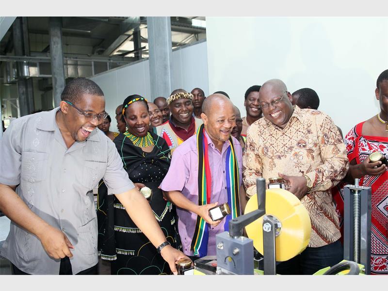 Marula plant for rural communitites | Zululand Observer