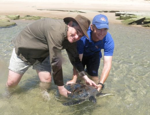 breaking andrew zaloumis steps down as ceo of isimangaliso wetland