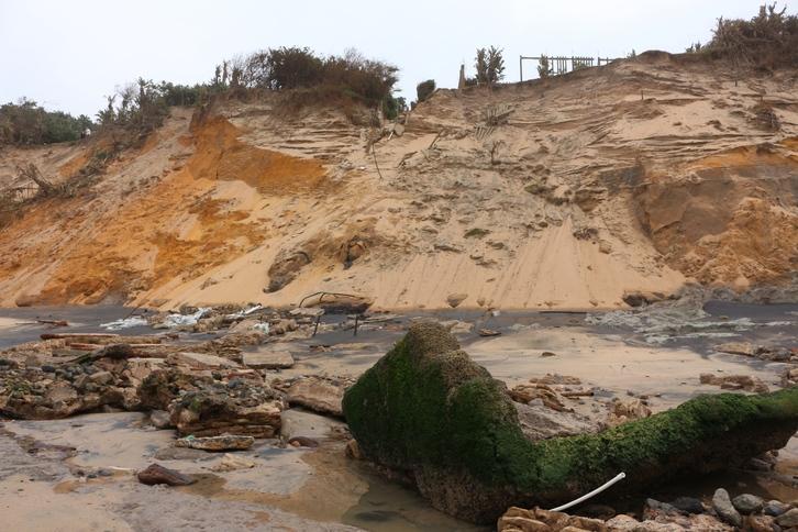 Image result for rbm dune rehabilitation