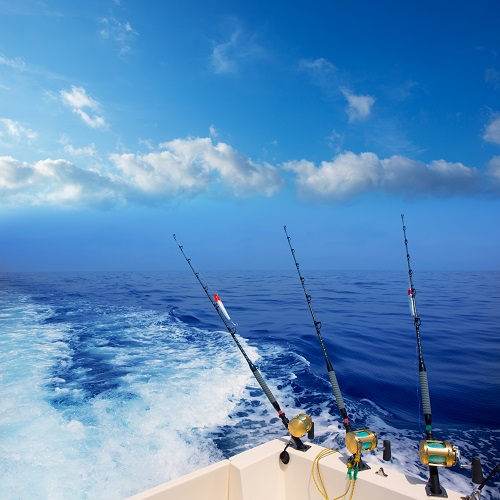 Local breaking news today zululand observer for Myrtle beach deep sea fishing prices