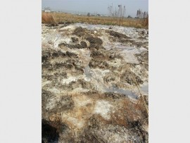 Photo: John Gainsford The aftermath from a sewage leak which was fixed by Joburg Water a few months later than expected.
