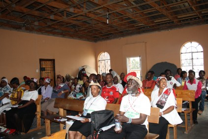 Traditional healers to join forces with doctors   Newcastle