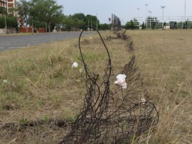 Rusted, tangled fencing opposite Arbor Park Primary School has been removed by the municipality.