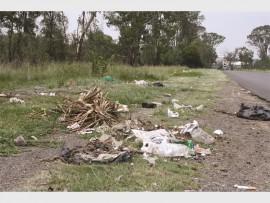 dumping5_17267
