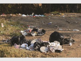 Heaps of refuse have left devotees of the nearby Paradise Hindu Temple fuming.
