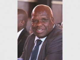 Mqapheleni Ngcobo will head the Municipal Public Accounts Committee.
