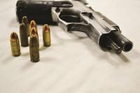 gun1 (Large)