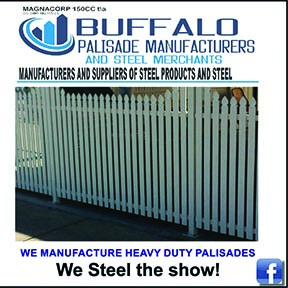 Buffalo Palisades 034-218-1363