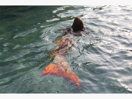 Where have the mermaids gone? | Ladysmith Gazette