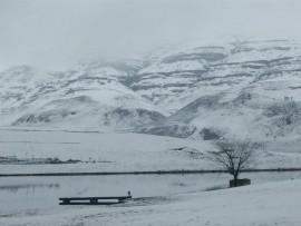 snow (Large)