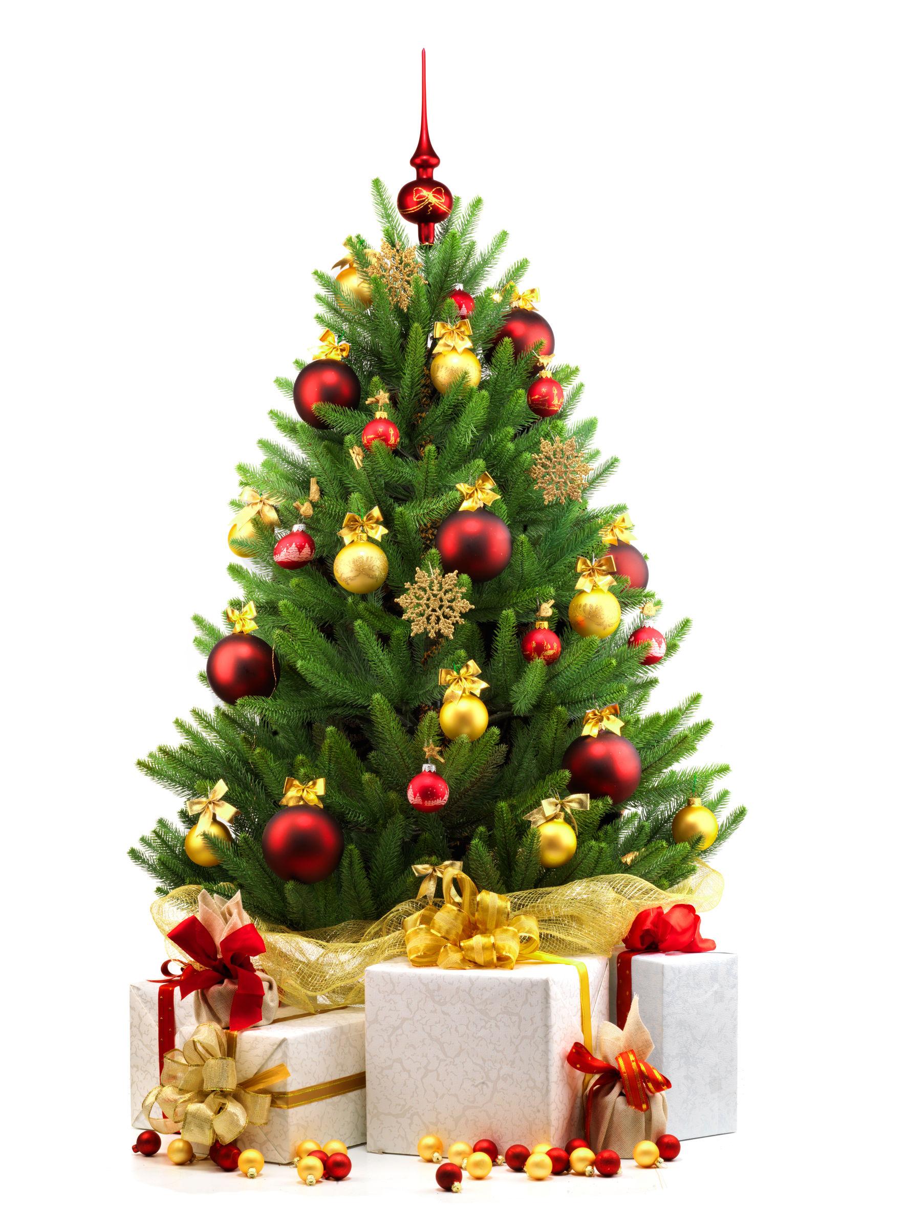 Ways to take down your Christmas tree - Ladysmith Gazette