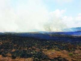 Rietvlei burning June 24