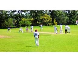 cricket 30-11-16