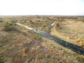 A big wetland of sewage is forming in the Mookgophong area and according to Luca Bornman, landowner, the community has been trying to solve this problem since 2008. Photo: Supplied