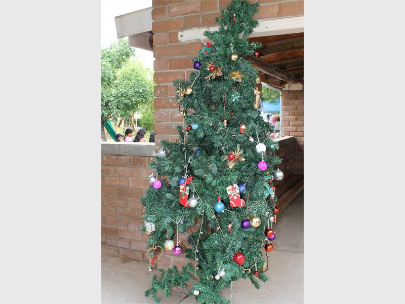 the origins of the christmas tree - The Origin Of The Christmas Tree