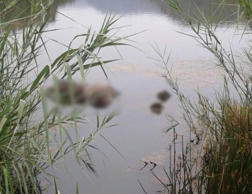 Missing man in Burgersfort found dead in dam | Review