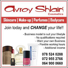 avroy shlain outlines