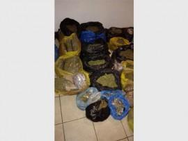 Marijuana worth an estimated R1.2 million was found in Braamfontein. Photo: Supplied.