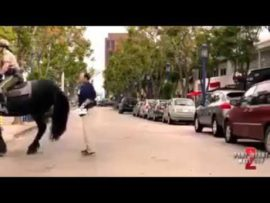 Why you should never spank a horse