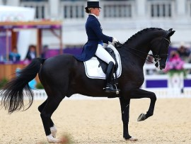 The Spring Dressage Competition is on Saturday and Sunday 15-16 October at the Galloping Winds Equestrian Estate.