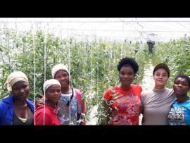 Five of Shirley's staff, from left, Sindy Njeje, Odwa Zamuva, Thembelihle Mkhize, Ayanda Makhanya, Shirley Coetsee and Maddie Madikizela.