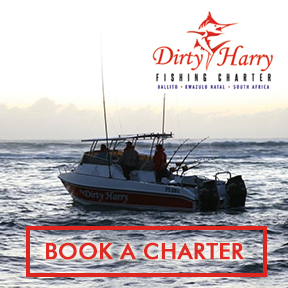 Dirty Harry Fishing  082 579 3878
