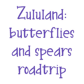 Discover Zululand on a roadtrip.