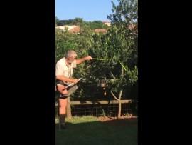 Neville Wolmarans in action