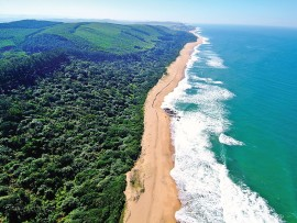 The pristine coastline at Blythedale streches as far as the eye can see.