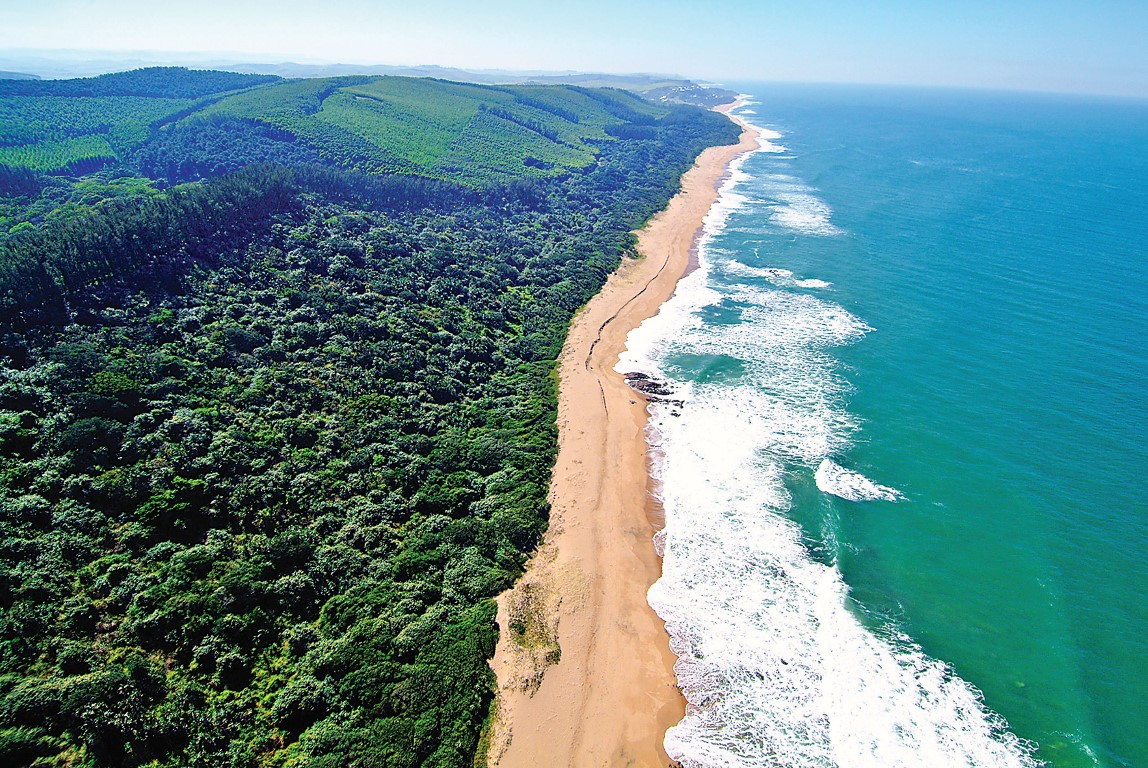 beaches of the dolphin coast north coast courier