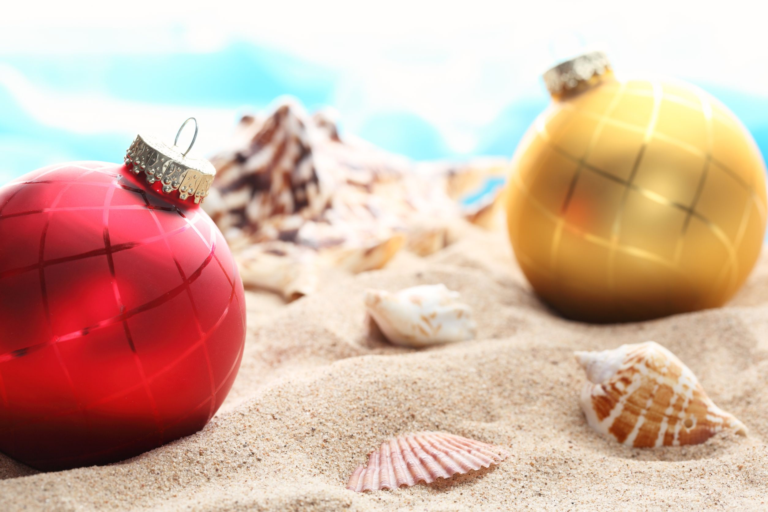 festive season Find festive season stock images in hd and millions of other royalty-free stock photos, illustrations, and vectors in the shutterstock collection thousands of new, high-quality pictures added every day.