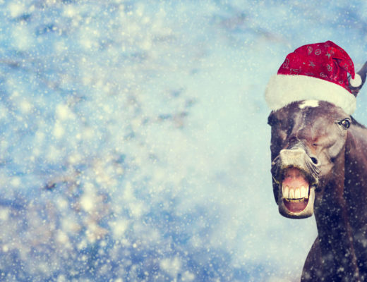 Christmas Traditions In South Africa.Weird And Wacky Christmas Traditions Around The World
