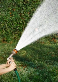 Woman doing garden work and watering with hose