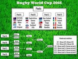 RugbyWorldCup2015_17610