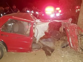 their vehicle veered off the road and slammed into a tree