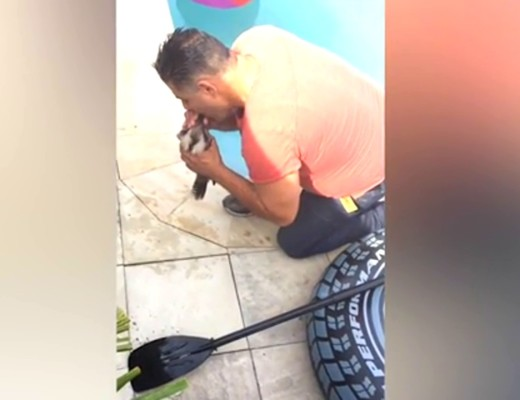 WATCH VIDEO: Hero saves iconic Australian bird after giving it MOUTH-TO-MOUTH resuscitation