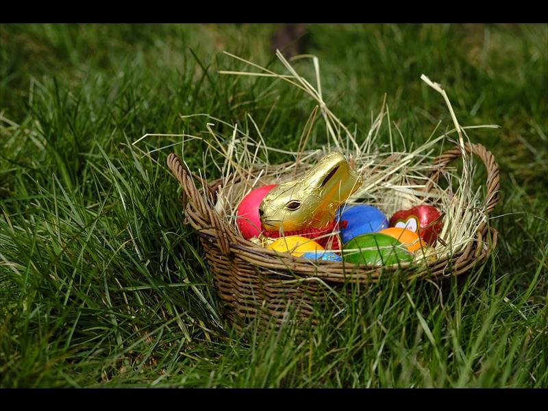 Warmer weather on tap for egg hunt