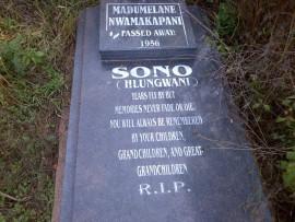 Grave1(1)_76350
