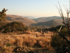 The Malapa site valley, Cradle of Humankind.  Photo: Lee R. Berger/Wikimedia Commons