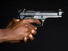 gun31