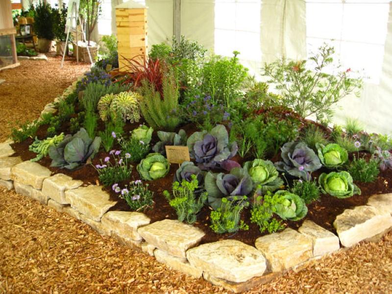 Opinion building an edible garden from scratch randburg sun - Decoracion para jardines pequenos ...