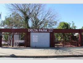 Delta Park School project is underway after so many delays. File Photo.
