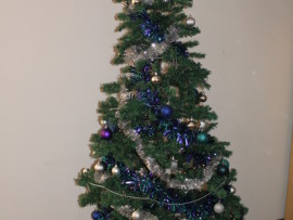 Tree_33563_tn