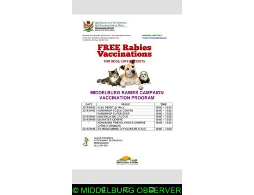 Bring your pet for a rabies vaccination, cheap microchip